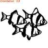 atomistickers-poisson-de-mer-barbus-zlook-poissons-en-banc