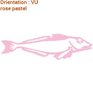Ce sticker ZLook grondin est apprécié par les pêcheurs.