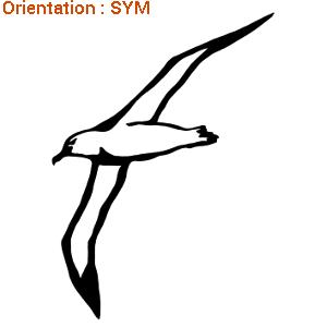 Ce sticker est superbe : un autocollant d'un albatros en vol (zlook oiseau du bord de mer).
