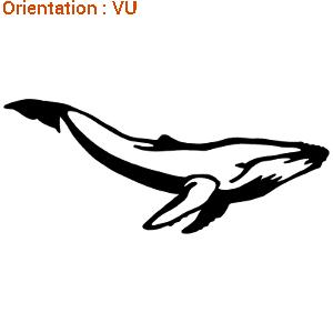 Ce sticker de zlook montre une baleine à bosse.