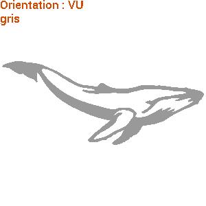 Mammifère marin gigantesque en sticker : atomistickers zlook baleine.
