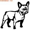 Le chien plissé est sur atomistickers !