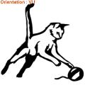 Un chaton jouant avec une pelote est un sticker réalsite de zlook.