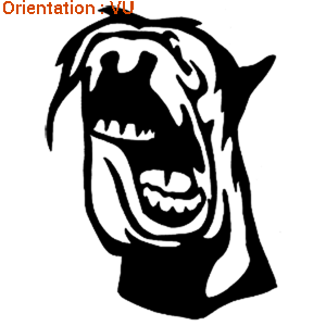 Sticker rigolo : humour au rendez-vous sur atomistickers.