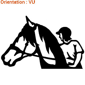 Zlook langage décoration déco de van sticker bombe campo fer a cheval.