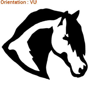 Ce sticker est une création atomistickers : autocollant tête de cheval.