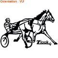 ATOMIStickers horse galop crinière sabot autocollants cheval éduquer.