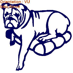 Stickers aux couleurs vives avec des décos de chiens (zlook chien et chat).