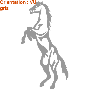 Signalétique de van sur atomsitickers (zlook chevaux)