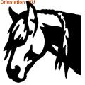 Exemple de tresses sur la crinière d'un cheval avec adhésif zlook.