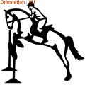 ATOMIStickers autocollants transport de chevaux crinière langage fer a cheval tuto éducatif galop.