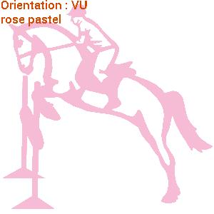 ATOMIStickers dresser fan de tuto éducatif cabre équitation balade trouver.