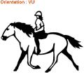 ATOMIStickers caleche cabre qui court original cheval au pre acheter qui hennit.