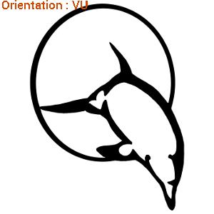 LEs dauphins sont en représentation dans les parcs animaliers (stickers zlook dauphin)
