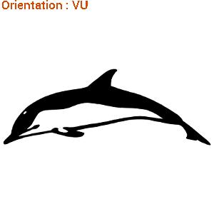 LE sticker autocollant dauphin qui nage fait fureur sur zlook.