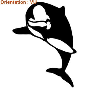 Atomistickers dauphin qui fait le beau sur zlook cétacé marin.