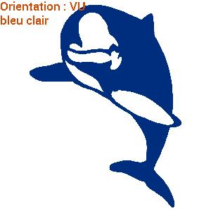 Autocollants de déco avec un joli dauphin (zlook thème marin).