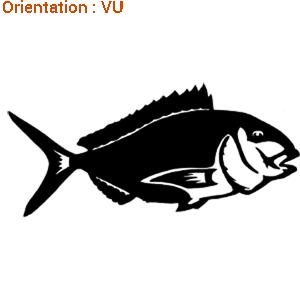 La dorade est un poisson noble mis à l'honneur par atomistickers.