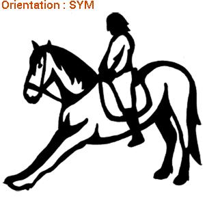 Stickers apprentissages de dressage pour mon cheval avec zlook autocollant.