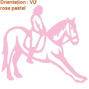 figure dressage cheval