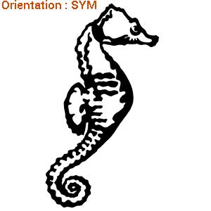 CE sticker hippocampe est vendu par atomistickers zlook.
