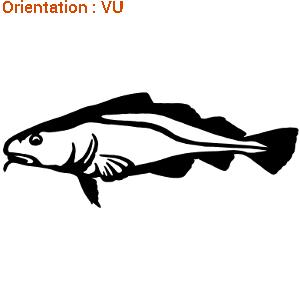 Un sticker Morue de la gamme d'autocollant poisson de mer par ZLook.