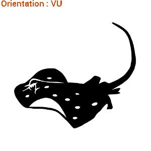 Ce sticker Zlook montre une raie qui nage (marque atomistickers).