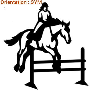 ATOMIStickers qui court offrir lettrages saut d'obstacle équitation fan de qui galope.