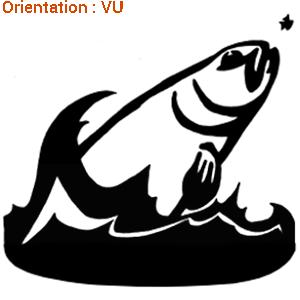 Sticker d'une truite en action de pêche (zlook pêcheur à la truite).