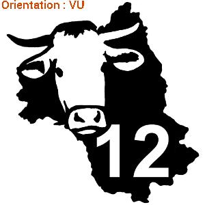 La vache de l'aveyron est une spécialité.