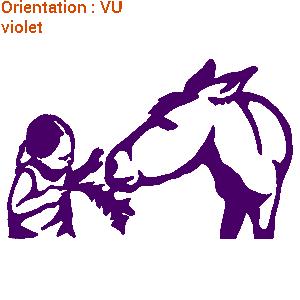 FIllette qui donne un pissenlit à un âne : zlook ânes et chevaux