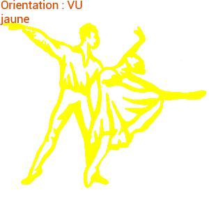 Adhésif danse classique : zlook danse avec les stars en visuel.