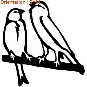 Ces oiseaux sont des canaris sur une branche : zlook oiseau