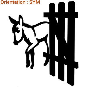 Joli sticker âne et autocollant chevaux pour immatriculation van avec zlook adhésif.