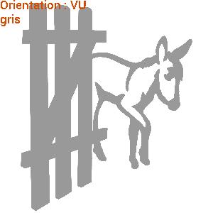 Immatriculation attention chevaux ou ânes pour van avec zlook.