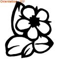 Zlook naturelle : coiffure avec des fleurs (sticker adhésif fleurs pour mur)