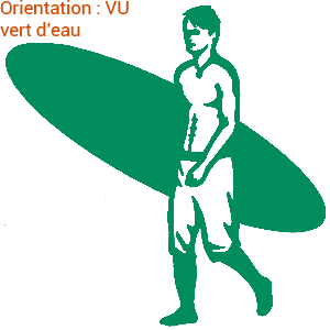 Aller surfer dans les rouleaux : zlook surf.