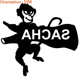 Plaque de porte personnalisée avec le prénom de votre enfant (zlook lettrage)
