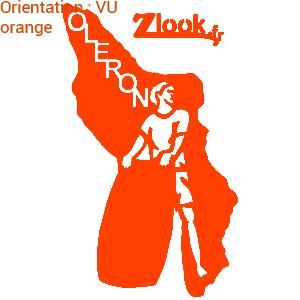 Quel spot de surf sur Oleron ? Zlook promeut le surf en mer avec cet adhésif.
