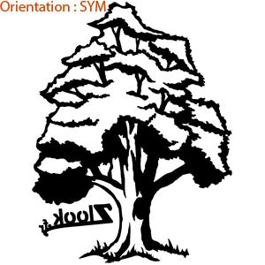 Offrir cet autocollant arbre à un proche : zlook chêne adhésifs.